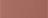 163-OPIUM ORCHID